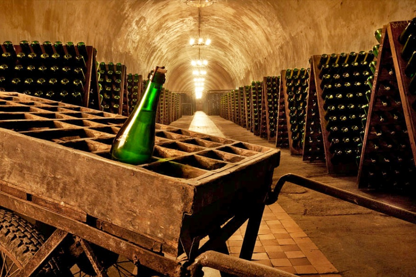 шампанское в погребах франции
