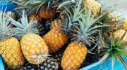 Срок годности ананаса от от 4 дней до 5 месяцев